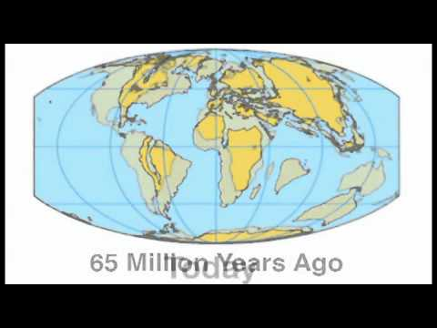 The 8 Minute Epoch 65 million Years with James Hansen
