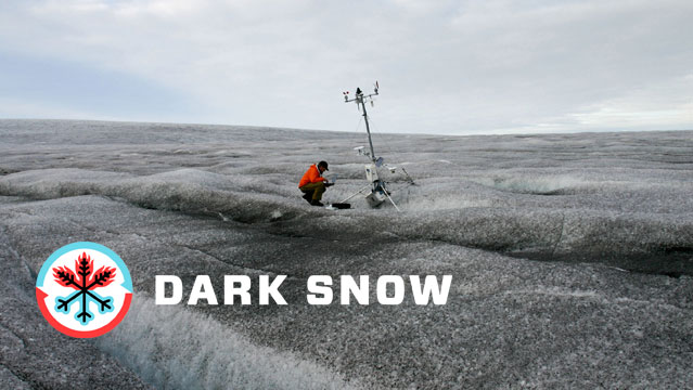 It&#8217;s the Dark Snow Project
