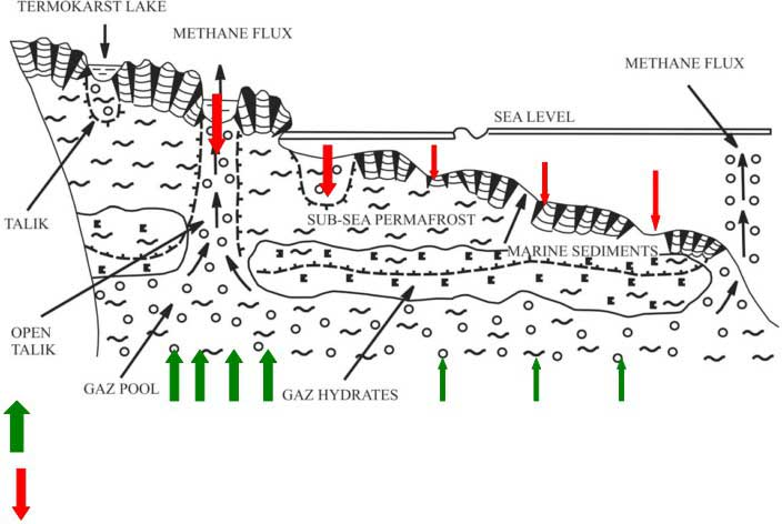 Mechanism of combined talik formation(geothermal heat + thermokarst)