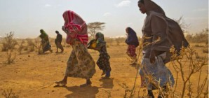 Climate-induced migration on the rise
