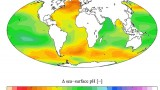 Is Ocean Acidification an Open-Ocean Syndrome? Understanding Anthropogenic Impacts on Seawater pH