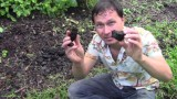 What is BioChar? How to Make & Why You shouldn't use Raw Biochar