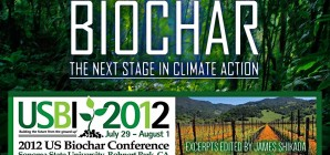 Biochar – The Next Stage In Climate Action