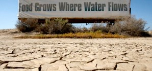 The California Drought – Natural, Man Made, or Both?