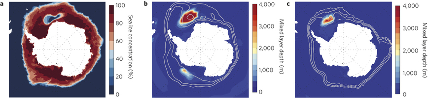 a, Observed 1974–1976 mean September sea ice concentration (%) from Nimbus-5 ESMR Polar Gridded Sea Ice Concentrations30 delineating the Weddell Polynya extent. b, September mixed layer depth (shading) and 25%, 50% and 75% September. Image: nature