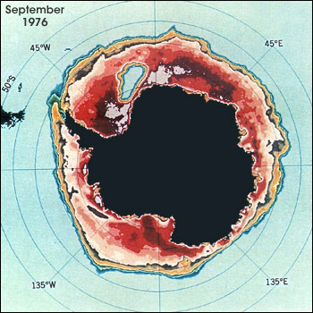 In the mid-1970s, Nimbus sensors were recording sea ice concentrations in the Southern Ocean surrounding Antarctica when they detected a large ice-free opening in the ice pack. This patch of open water, called a polynya, recurred each winter between 1974-76, and has not retuned since. In the image at left, Antarctica is colored black and sea ice concentrations appear in shades of red and orange. The Weddell Sea polynya is the light blue (open water) area in the upper left quadrant of the image. Credit: Claire Parkinson (NASA GSFC)
