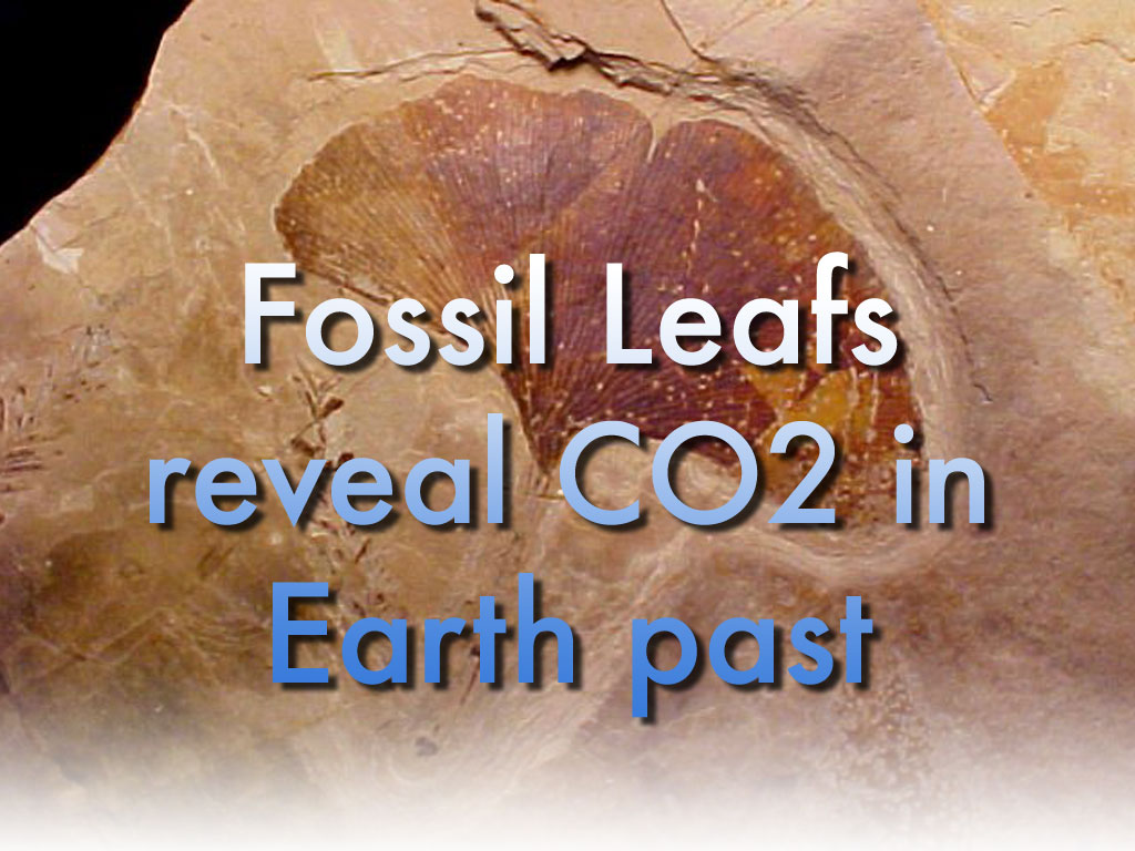 Novel climate proxy reveals CO2 content of Earth's atmosphere, of the past 400 million years