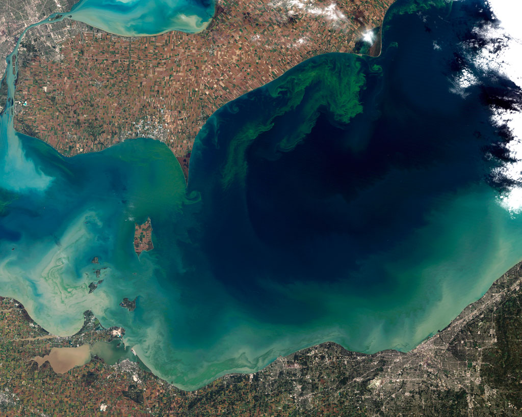 Cyanobacteria blooms (harmful algae blooms) and climate change