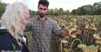 Organic Farmer Uses Biochar – Quick Look at First Year Results