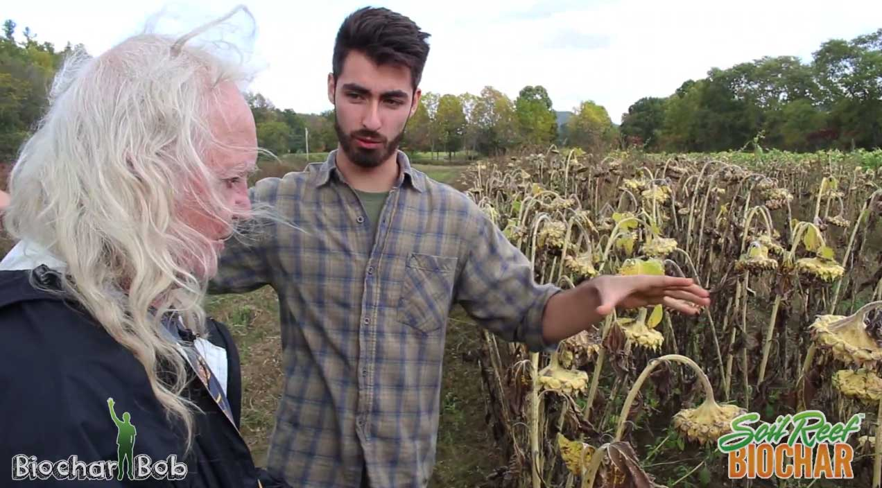 Organic Farmer Uses Biochar - Quick Look at First Year Results
