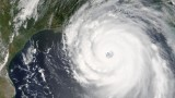 Forests Damaged by Hurricane Katrina Become Major Carbon Source