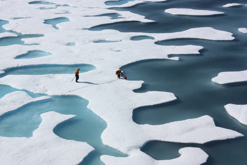 Melt ponds on the Arctic Ocean ICESCAPE Mission