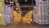 How to Give Your Warehouse an Eco Makeover